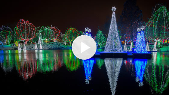 AEP Ohio: Zoo Wildlights