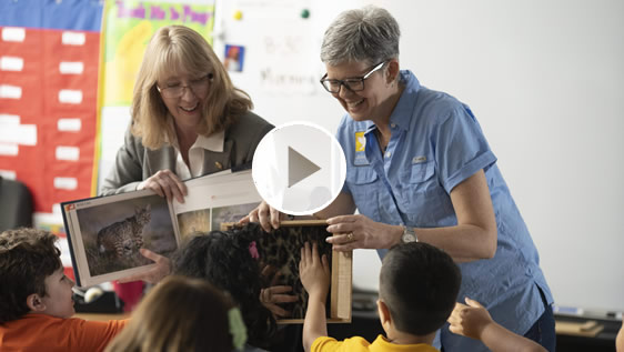 AEP Texas Video: Kritters 4 Kids